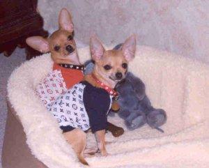 Eddie & Merry